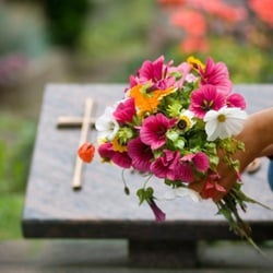 Servicii funerare pret
